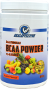 BCAA Pulver 500g  HNT24  Exotic
